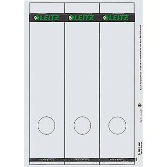 Leitz hendel Klasseur/Ordner etiketten 1687-00-85 39 x 285 mm Paper grijs permanente 75 pc('s)