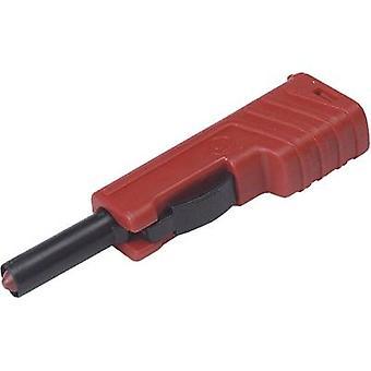 SKS Hirschmann SLS 200 SVHS pistoke, suoraan sokan halkaisija: 4 mm punainen 1 PCs()