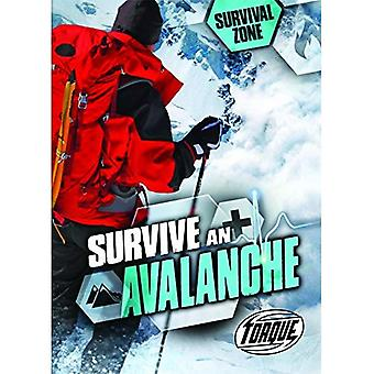 Survive an Avalanche (Survival Zone)