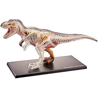 Famemaster 4D visión anatomía del T-Rex modelo