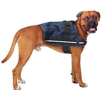 XT-hund Arnes aktiv afspejler (hunde, kraver, fører og maveposer, seler)
