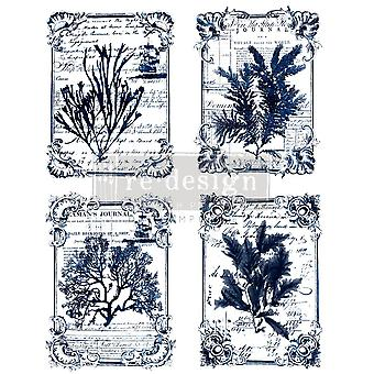 Re-Design com Prima Transfer Paper Seaweed