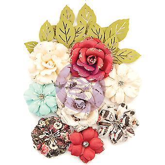 Prima Marknadsföring Midnight Garden Blommor Trädgård Blooms