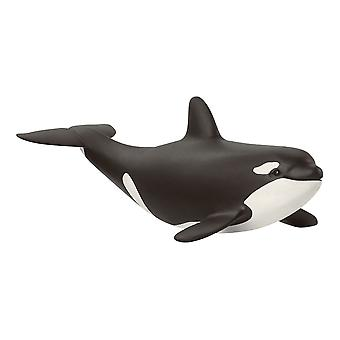 Schleich Wild Life - Baby Killer Whale Figure