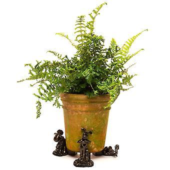 Potty Fötter Dekorativ Wallace och Gromit Tema Växt Pot Fötter - Set of 3