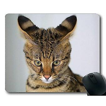 Mouse pads 300x250x3 gaming mouse mat savannah cat mouse pad mouse mat for computer cat214