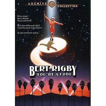 Bert Rigby, olet hullu [DVD] USA-tuonti