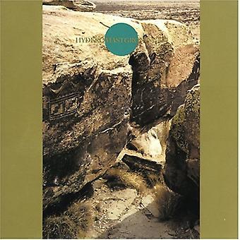 Ruins - Hyderomastgroningem [CD] USA import