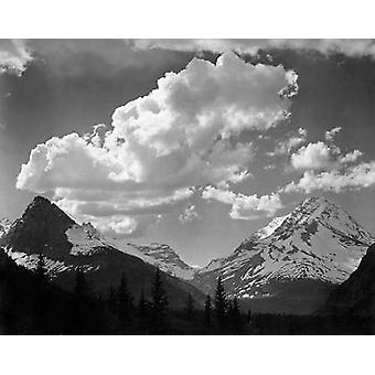 עצים בפארק הקרחונים הלאומי מונטנה-פארקים לאומיים ואנדרטאות 1941 פוסטר הדפסה על ידי אנסל אדמס