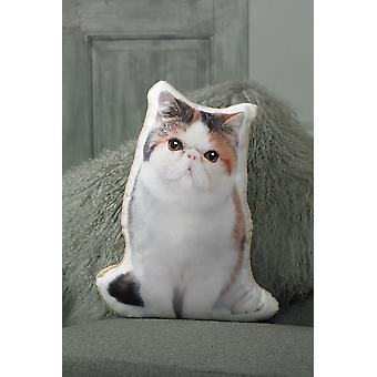 Adorable exotic shorthair cat shaped cushion