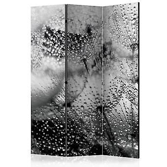 Biombo - Kiss of the Rain [Room Dividers]