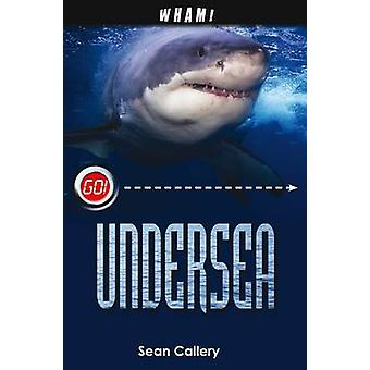 Wham Undersea by Sean Callery