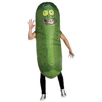 Pickle Rick inflatable costume