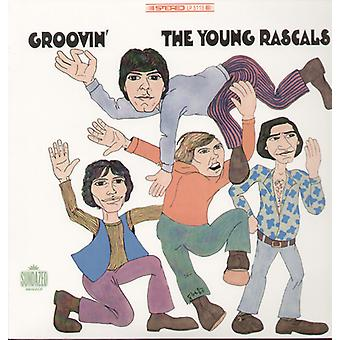 Rascals (Young) - Groovin [Vinyl] USA import