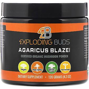 Exploding Buds, Agaricus Blazei, Certified Organic Mushroom Powder, 4.2 oz (120