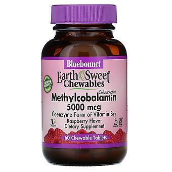 Bluebonnet Nutrition, EarthSweet Chewbyables, CellularActive Methylcobalamine, Rasp