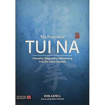 De praktijk van Tui Na: Principes, Diagnostiek en Het werken met de Sinew Kanalen