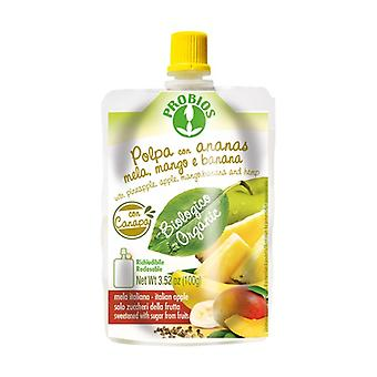 Pulp with pineapple apple mango banana hemp - doypack package 100 g