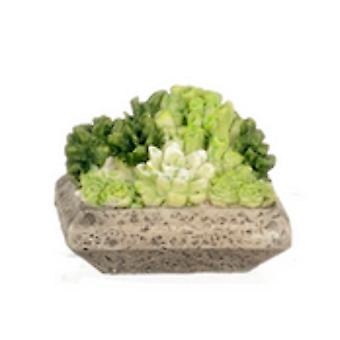 Dolls House Low Planter Full Of Succulents Miniature Home Or Garden Accessory