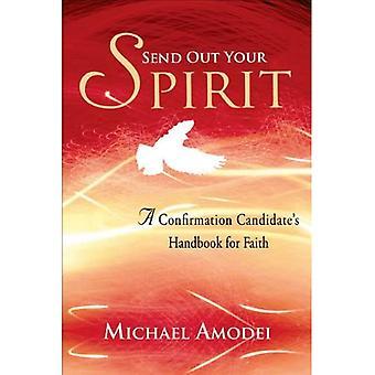 Send din ånd ud: En bekræftelseskandidats håndbog for tro