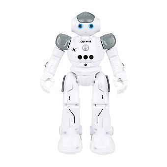Gesture Sensing Smart Robot Can Dance