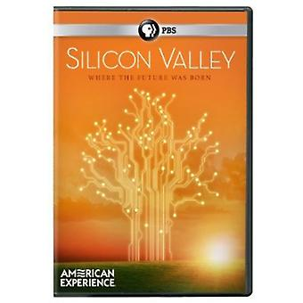 Silicon Valley (the Titans) [DVD] USA import