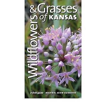 Vilda blommor och gräs av Kansas - en Fälthandbok av Michael John Hadd