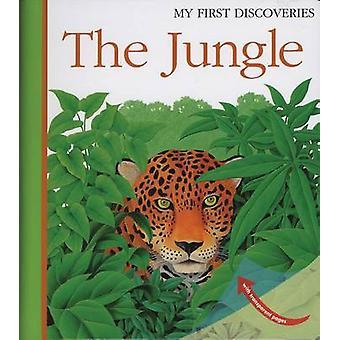 The Jungle by Rene Mettler - Rene Mettler - 9781851033997 Book