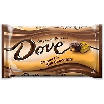 Dove Caramel & Milk Chocolate Silky Smooth Promises Chocolate Candy