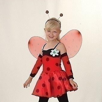 Ladybug (M)