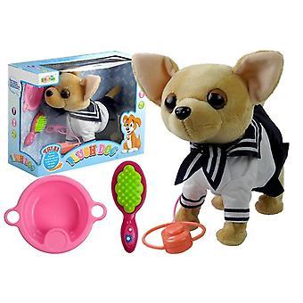 Plushe speelgoed Chihuahua-hond met waterbakje, kam & riem - 24x22x11 cm