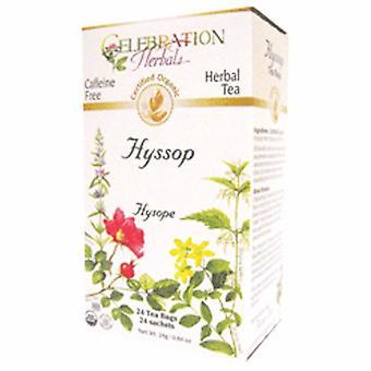 Celebration Herbals Organic Hyssop Herb Tea, 24 Bags