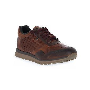 Antique shoe steppe Exton