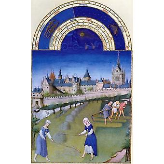Harvest Time by Limbourg Brothers 15th Century 1385-1416 Poster Print