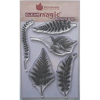 Woodware Clear Stamps - Samambaias