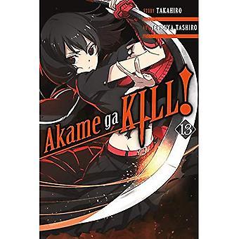Akame ga Kill!, Vol. 13 (broché)