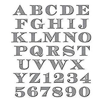 Truecan Shapeabilities grabado alfabeto dados (S5-239)