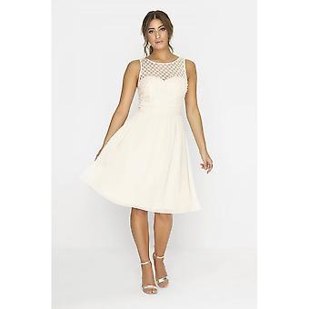 Little Mistress Womens/Ladies Lace Grid Prom Dress