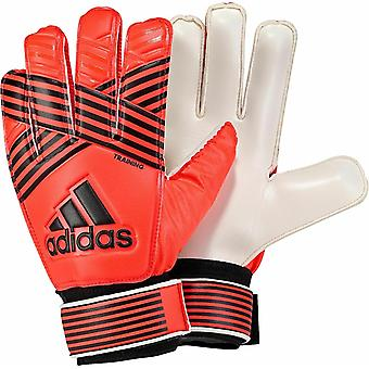 Adidas ACE Goalkeeper Gloves BQ4576