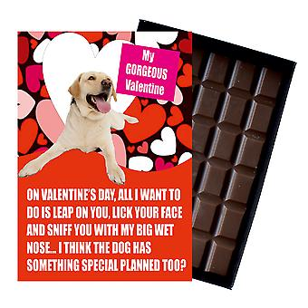 Yellow Labrador Gift for Valentines Day Presents For Dog Lovers Boxed Chocolate