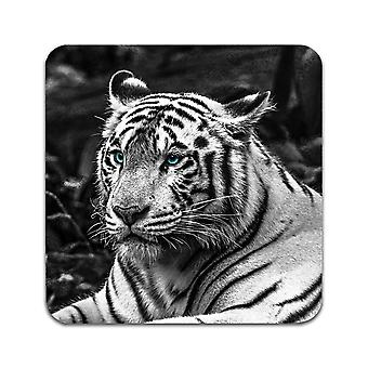 4 ST Tiger Coasters