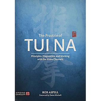The Practice of Tui Na - Principles - Diagnostics and Working with the