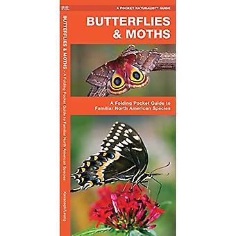 Butterflies & Moths of North America: An Introduction to Familiar North American Species (Pocket Naturalist)