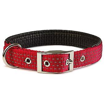 Arquivet punainen Smooth Nylon kaulakoru (koirat, kaulus kaulanauha, johtaa ja valjaat, pannat)