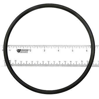APC APCO2142 Pump Lid O-Ring