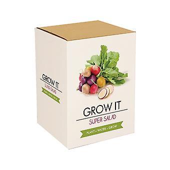 Grow it super salad Veggie salad seed gift cultivation set