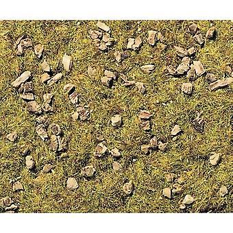 NOCH 8360 Grama rebanho pastagem alpina Médio verde