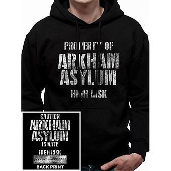 Batman Unisex Adults Arkham Asylum Hooded Sweatshirt