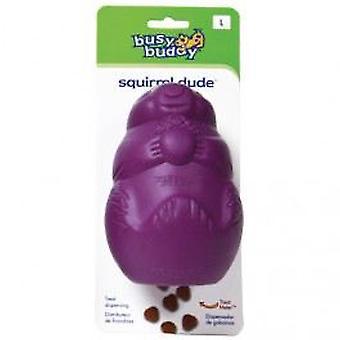 Chadog Squirrel Dude Small 6 X 6 X 9Cm