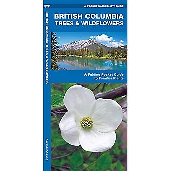 British Columbia Trees and Wildflowers: An Introduction to Familiar Plants